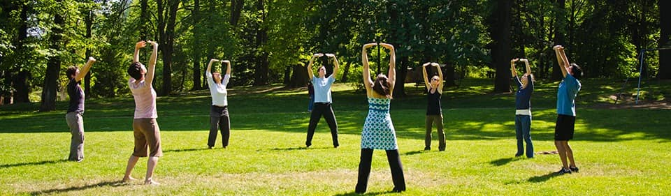 People practicing Qi Gong in the grass